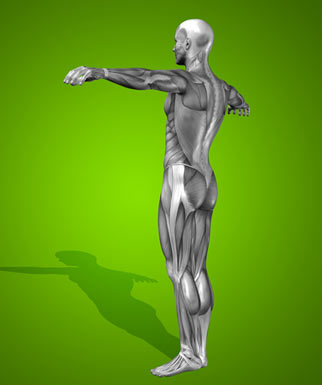 posture - Unlock Your Glutes - Conversion Monster!