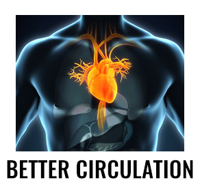 better circulation - Unlock Your Glutes - Conversion Monster!